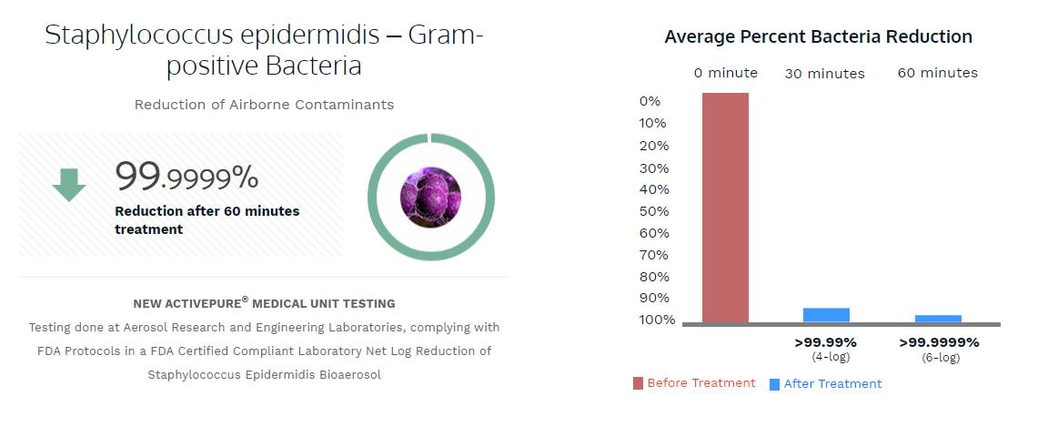 Staphylococcus epidermidis – Gram-positive Bacteria